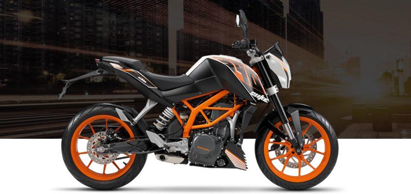Rider Story: Whitney Webb // 390 Duke
